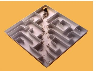 maze_small